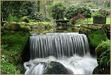 Gardens of Cornwall